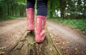 Wandern mit Kind - Abwechslung während des Wanderns schaffen