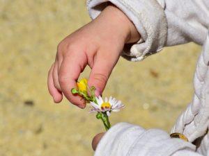 Wandern mit Kind - Neue Dinge ertasten